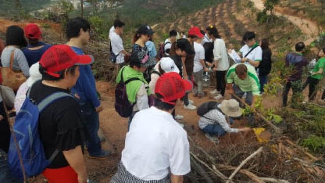 菱峰慈善會參與全城愛綠共植家園活動