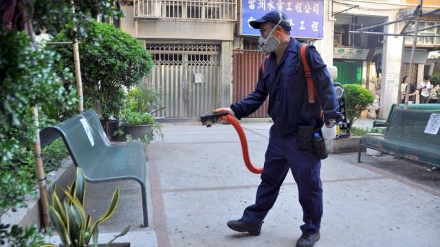 衛局減低登革熱傳播 減蚊頻率倍增降風險
