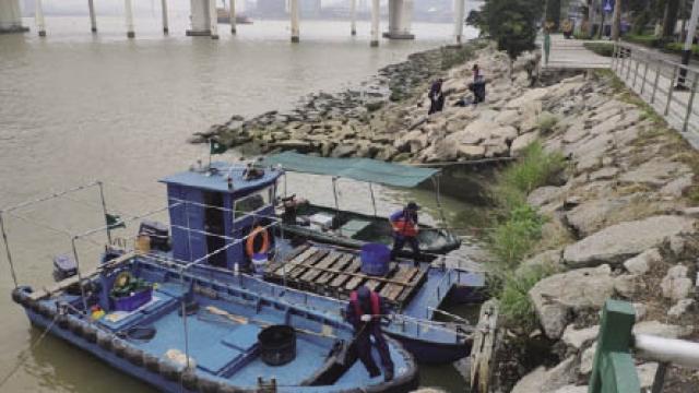 西灣沿岸垃圾堆積 海局協調加強清理
