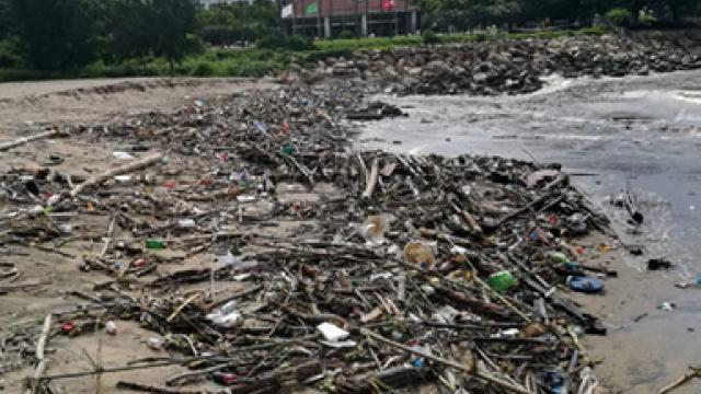 風後海灘堆滿垃圾_懸紅旗清理勿下水