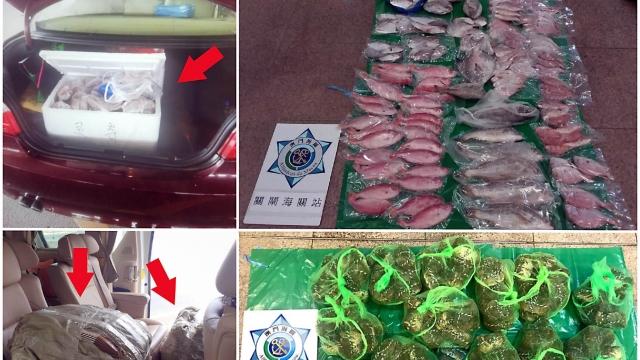 海關查獲七宗走私入境 檢九十公斤大閘蟹魚類