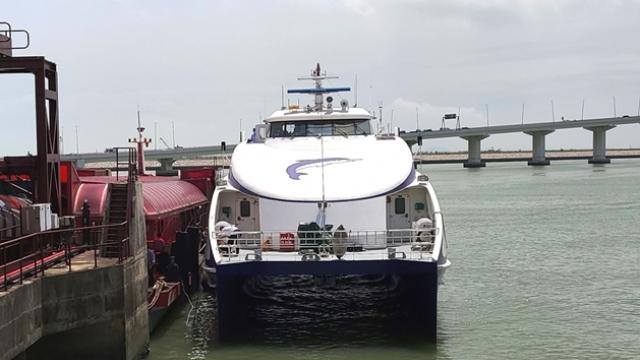 澳往返蛇口客船服務_今起增加至每日八班